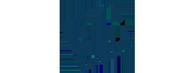 gb micro logo